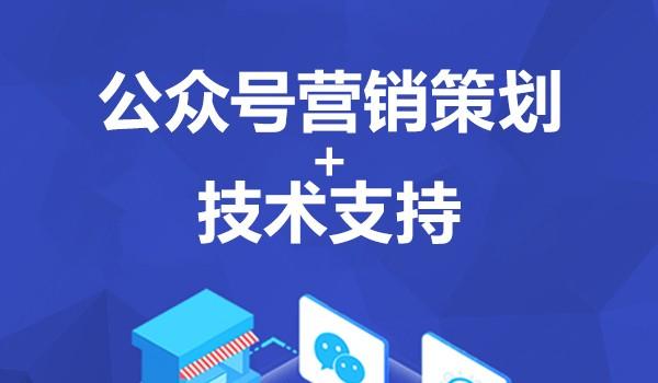 公众号营销策划+技术支持